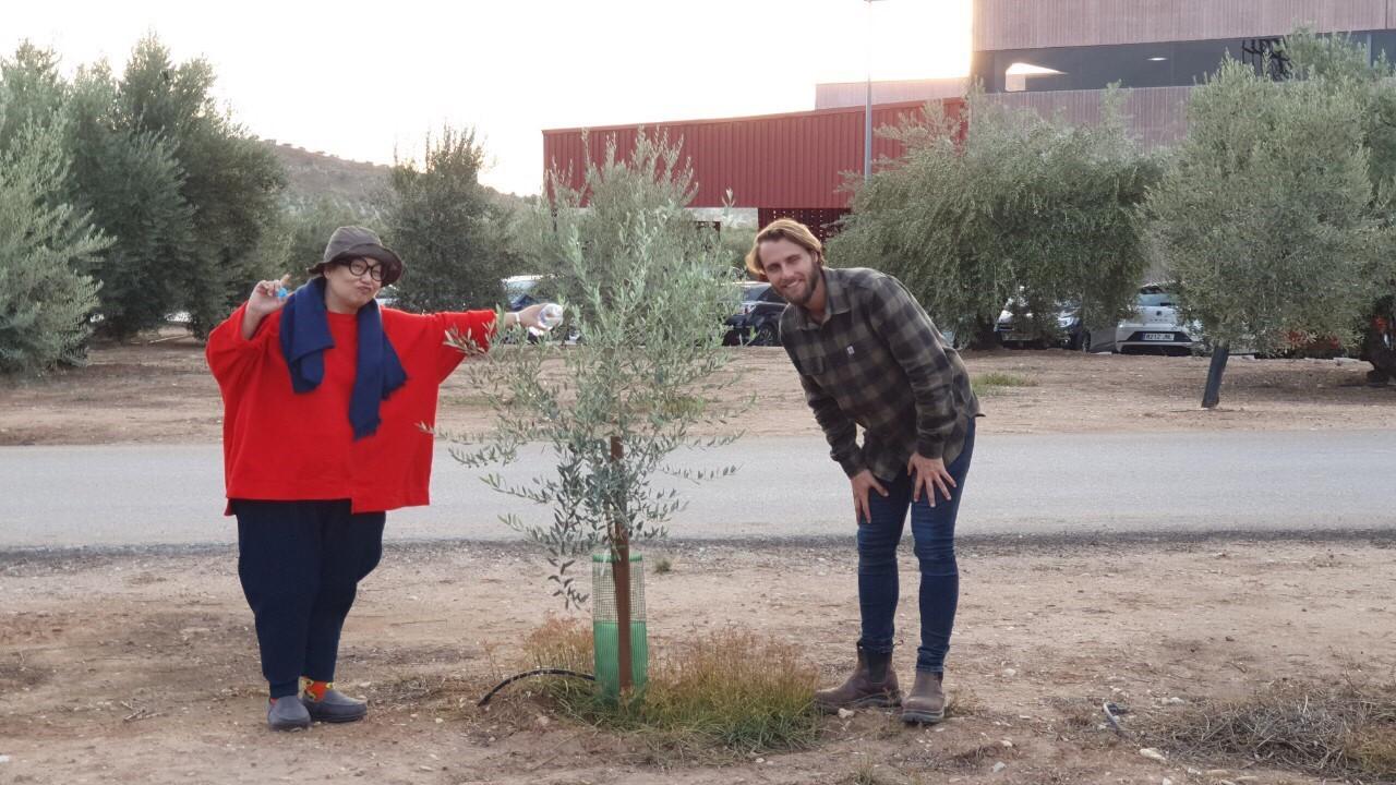 【2019 西班牙橄欖油行】巴狄尼絲莊園-LULU樹篇