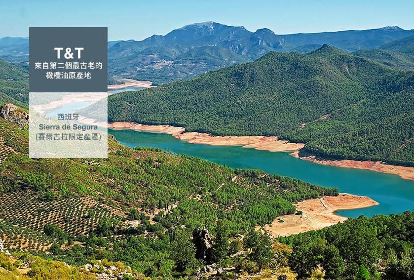 匯聚千年秘境精華~ 來自西班牙賽古拉山脈的T&T莊園橄欖油