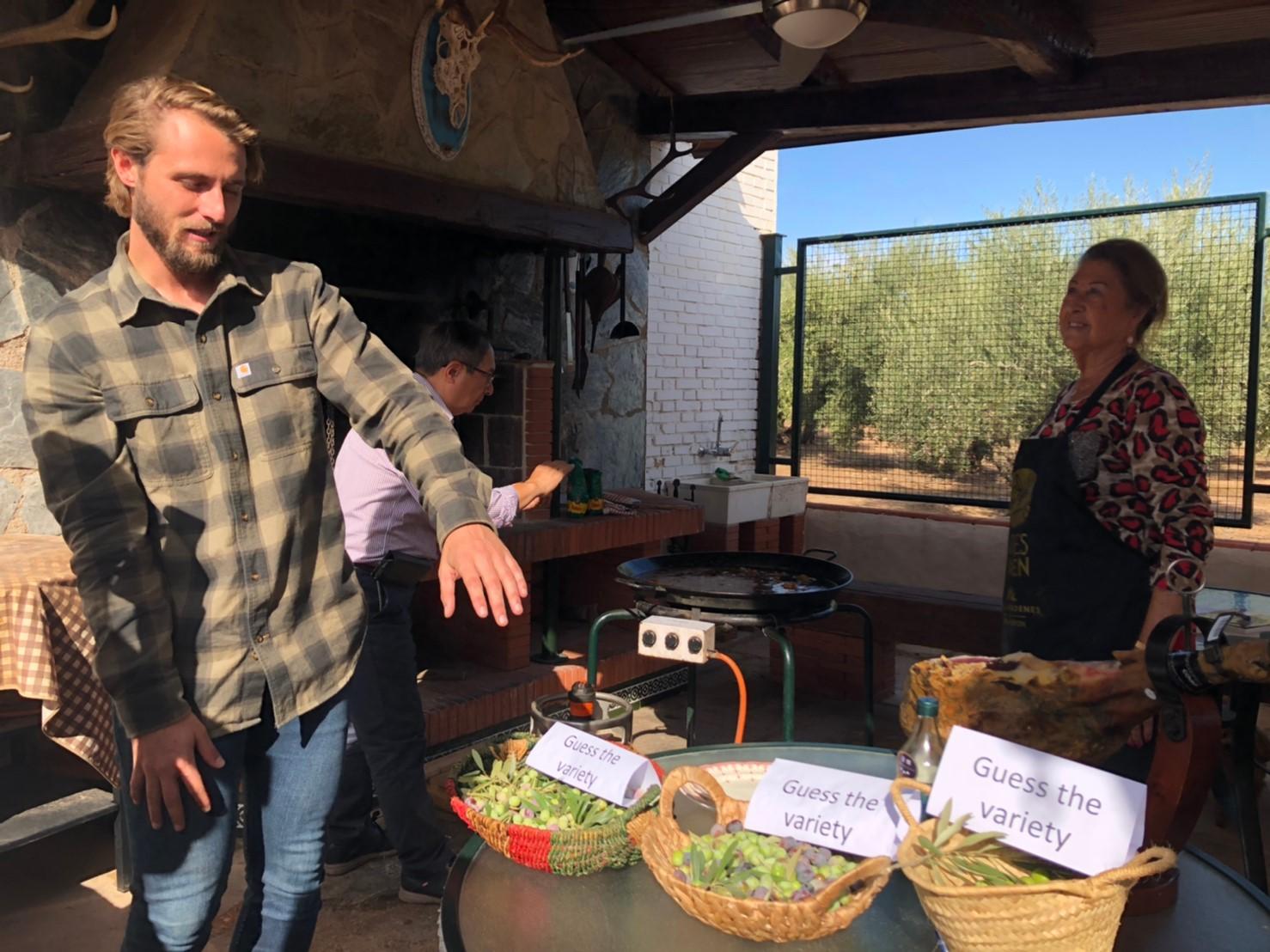 【2019 西班牙橄欖油行】巴狄尼絲莊園-橄欖篇