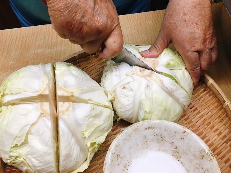連新手都學得會的醃酸高麗菜,酸高麗菜自製法!李媽醃菜教學