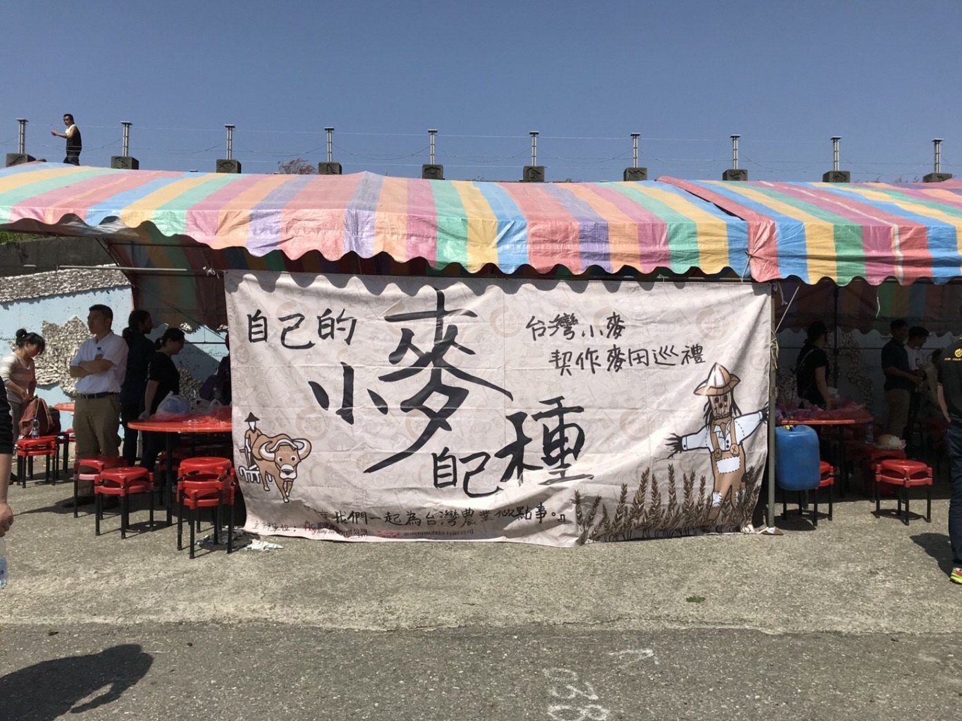 小農特區:臺灣的小麥,自己種