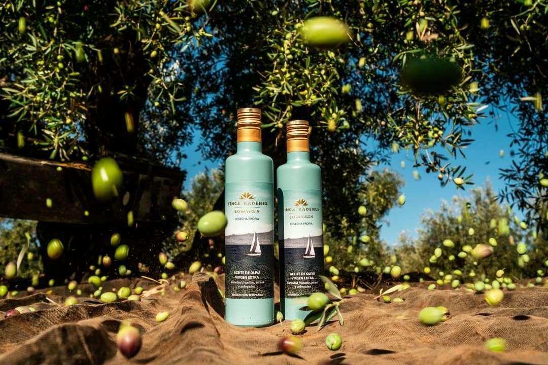 莊園橄欖油團購必敗!美食部落客最愛指定款!