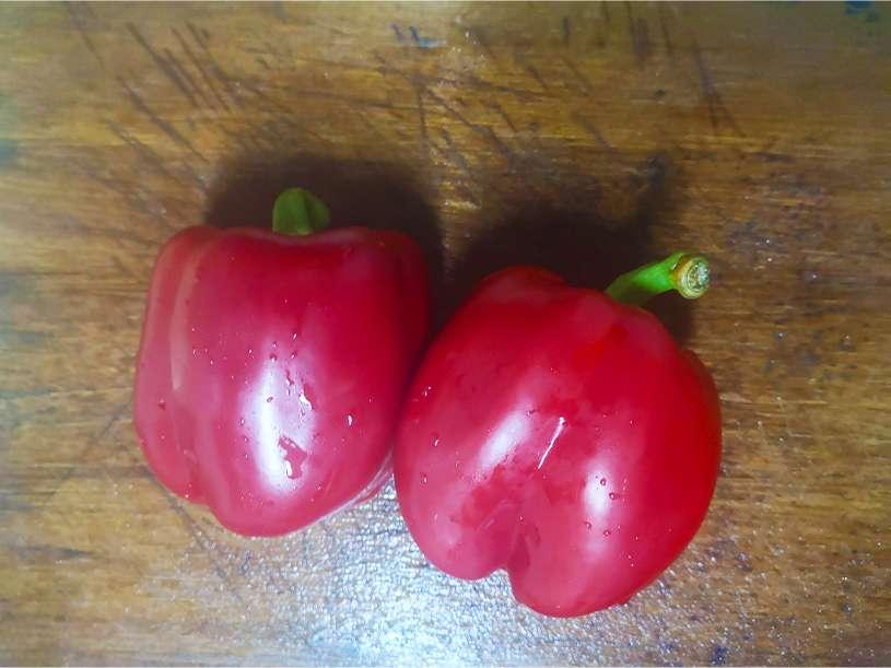 豆油伯今日不開火廚房—油漬甜椒