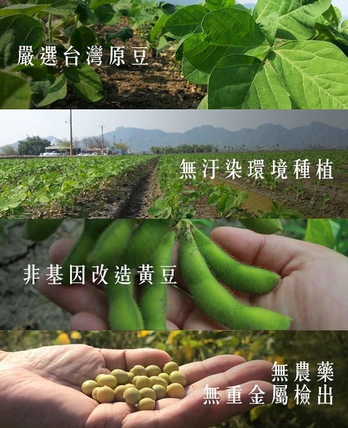 台灣黃豆4入